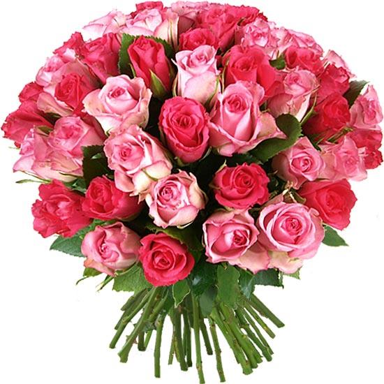 http://i01.aquarelle.eu/bouquets/amalia-blushing-50_550.jpg