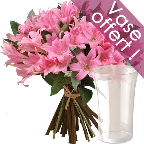 Bouquet d 39 amaryllis livraison de fleurs for Fleurs amaryllis bouquet
