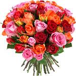 roses-variees-envoi-50-9610-150